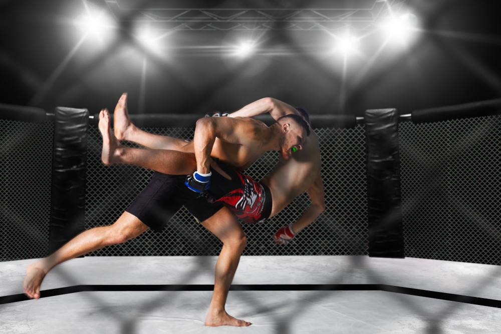 Wyniki MMA na żywo